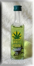 CANNABIS WHITE WIDOW MINI