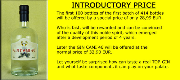 gin-cami-46-introductory.jpg